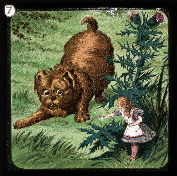 alicelanterns_7 - Alice in Wonderland, in 24 Vintage Magic Lantern Slides - Lifestyle, Culture and Arts