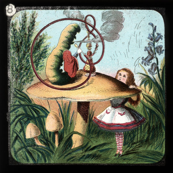 alicelanterns_8 - Alice in Wonderland, in 24 Vintage Magic Lantern Slides - Lifestyle, Culture and Arts