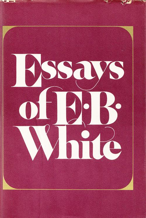 B e essay white