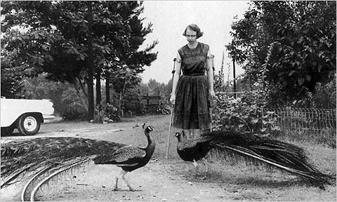 flannery o connor single author comparison Use our free chapter-by-chapter summary and analysis of a good man is hard to find it helps middle and high school students understand flannery o'connor's literary masterpiece.